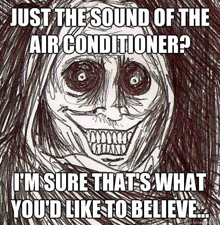 Just the sound of the air conditioner? I'm sure that's what you'd like to believe... - Just the sound of the air conditioner? I'm sure that's what you'd like to believe...  Horrifying Houseguest