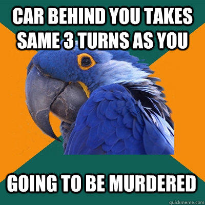 Car behind you takes same 3 turns as you going to be murdered - Car behind you takes same 3 turns as you going to be murdered  Paranoid Parrot