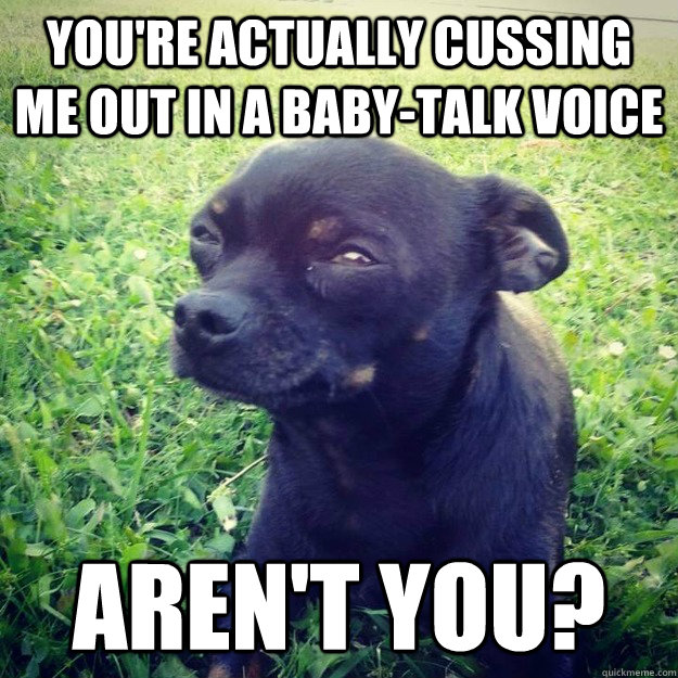 you're actually cussing me out in a baby-talk voice aren't you? - you're actually cussing me out in a baby-talk voice aren't you?  Skeptical Dog