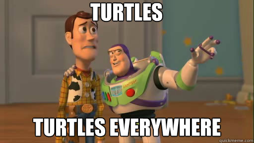 Turtles turtles everywhere - Turtles turtles everywhere  Everywhere