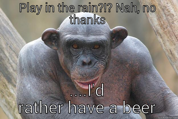 PLAY IN THE RAIN?!? NAH, NO THANKS ....I'D RATHER HAVE A BEER The Most Interesting Chimp In The World