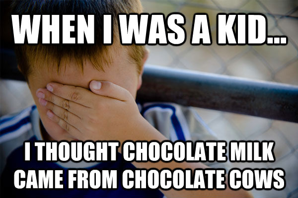 WHEN I WAS A KID... I THOUGHT CHOCOLATE MILK CAME FROM CHOCOLATE COWS  - WHEN I WAS A KID... I THOUGHT CHOCOLATE MILK CAME FROM CHOCOLATE COWS   Misc
