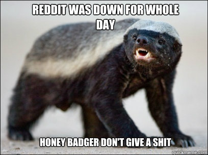 Reddit was down for whole day Honey badger don't give a shit