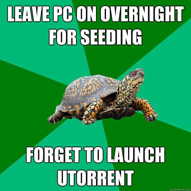 Leave pc on overnight for seeding forget to launch utorrent  Torrenting Turtle