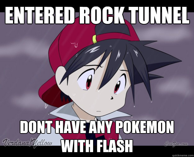 Entered rock tunnel dont have any pokemon with flash