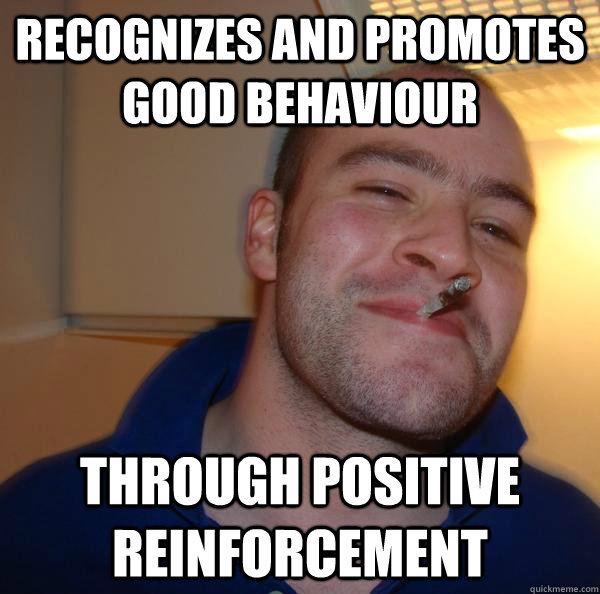 Recognizes and promotes good behaviour through positive reinforcement - Recognizes and promotes good behaviour through positive reinforcement  Misc