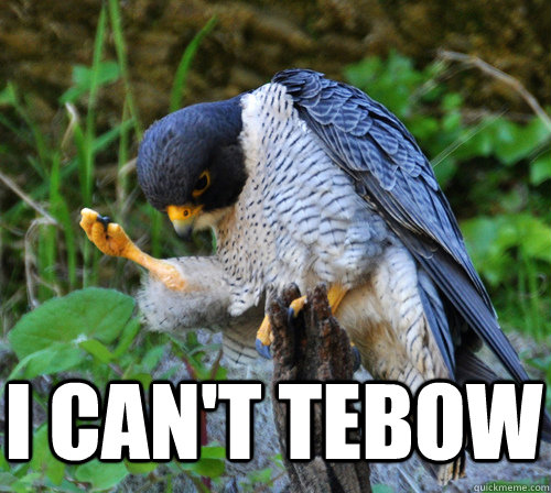 I can't Tebow   Success Falcon