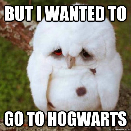 But I wanted to go to Hogwarts