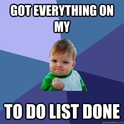 got everything on my to do list done - got everything on my to do list done  Success Kid