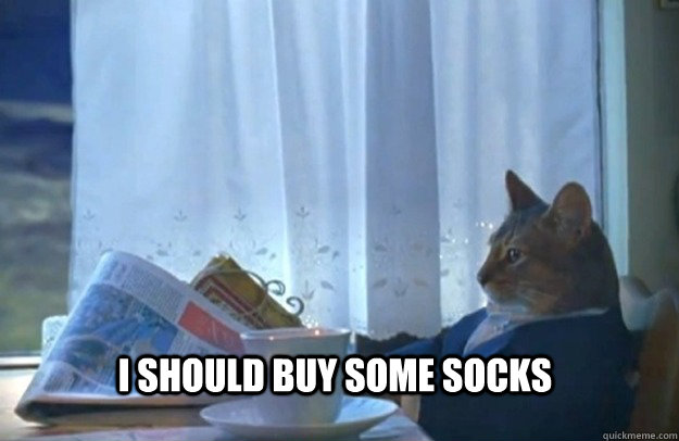 I should buy some socks - I should buy some socks  Sophisticated Cat