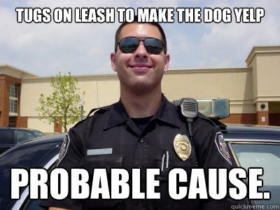 TUGS ON LEASH TO MAKE THE DOG YELP PROBABLE CAUSE.