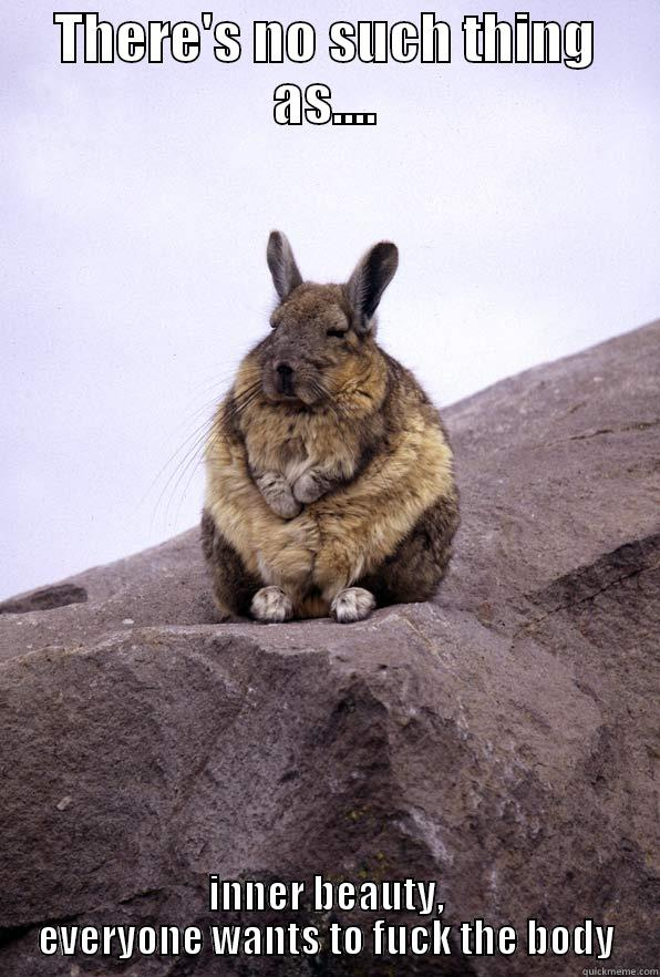 THERE'S NO SUCH THING AS.... INNER BEAUTY, EVERYONE WANTS TO FUCK THE BODY Wise Wondering Viscacha