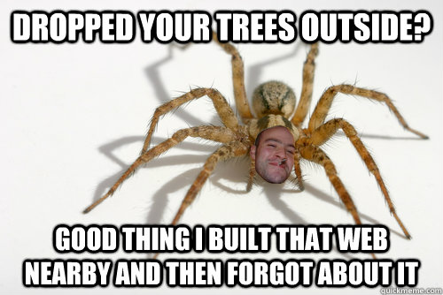 Dropped your trees outside? good thing i built that web nearby and then forgot about it - Dropped your trees outside? good thing i built that web nearby and then forgot about it  Good guy spider