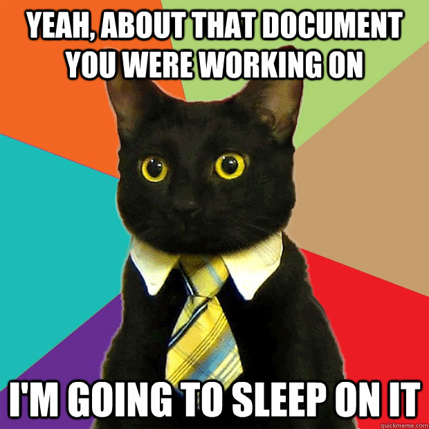 Yeah, about that document you were working on  I'm going to sleep on it - Yeah, about that document you were working on  I'm going to sleep on it  Business Cat