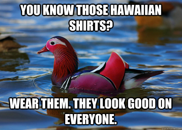 you know those hawaiian shirts? wear them. they look good on everyone.  Malicious Fashion Advice Mallard