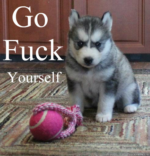c5de53a6e9bf9cc8f8bade85a6fbac0aa0d9e9f42f6be62540e3f3b63fa4cffd go fuck yourself angry puppy quickmeme