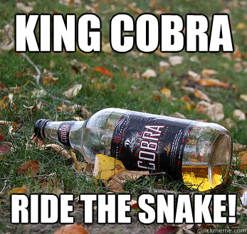 cobra roman