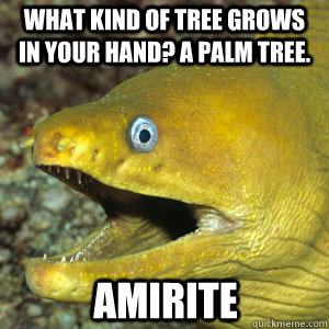 WHAT KIND OF TREE GROWS IN YOUR HAND? A PALM TREE. AMIRITE  Amirite Eel