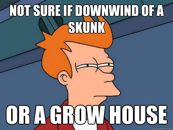Not sure if downwind of a skunk or a grow house - Not sure if downwind of a skunk or a grow house  Futurama Fry