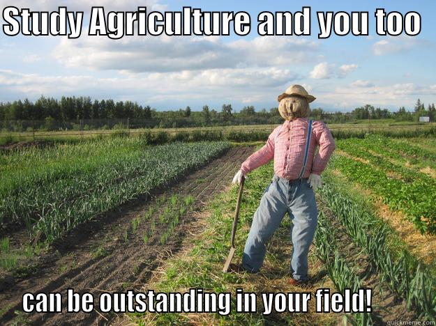 STUDY AGRICULTURE AND YOU TOO   CAN BE OUTSTANDING IN YOUR FIELD!         Scarecrow