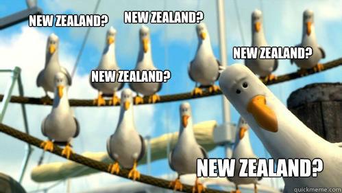 New Zealand? New Zealand? New Zealand? New Zealand? New Zealand? - New Zealand? New Zealand? New Zealand? New Zealand? New Zealand?  Finding Nemo Seagulls