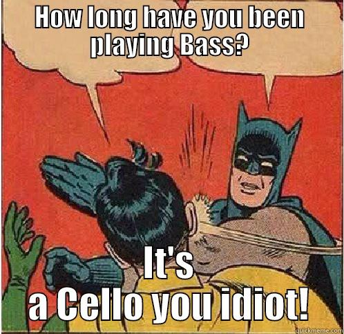 HOW LONG HAVE YOU BEEN PLAYING BASS? IT'S A CELLO YOU IDIOT! Batman Slapping Robin