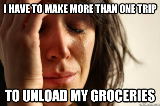 i have to make more than one trip to unload my groceries - i have to make more than one trip to unload my groceries  First World Problems