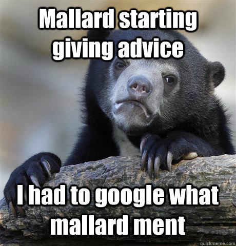 Mallard starting giving advice I had to google what mallard ment - Mallard starting giving advice I had to google what mallard ment  Confession Bear
