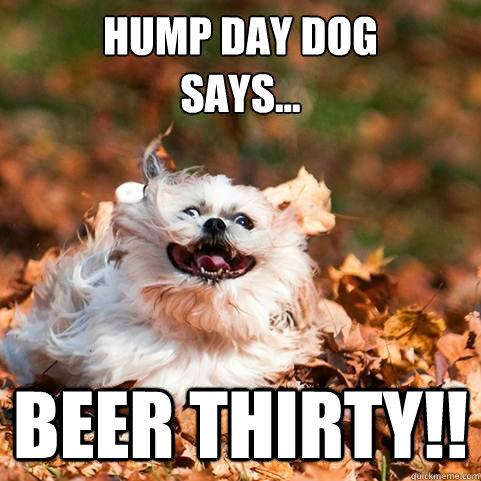 Hump day dog says... Beer Thirty!! - Hump day dog says... Beer Thirty!!  Hump Day Dog