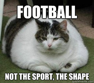 football not the sport, the shape  Fat Cat