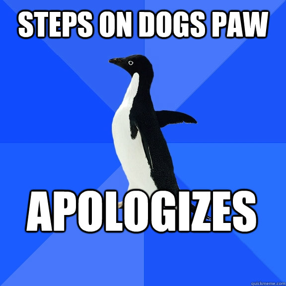 Steps on dogs paw apologizes   - Steps on dogs paw apologizes    Socially Awkward Penguin