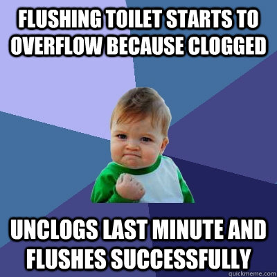 Flushing toilet starts to overflow because clogged Unclogs last minute and flushes successfully - Flushing toilet starts to overflow because clogged Unclogs last minute and flushes successfully  Success Kid