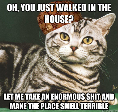 Oh, you just walked in the House? let me take an enormous shit and make the place smell terrible - Oh, you just walked in the House? let me take an enormous shit and make the place smell terrible  Misc