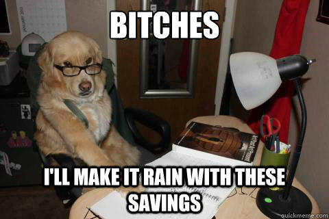 Bitches I'll make it rain with these savings - Bitches I'll make it rain with these savings  Financial Advice Dog