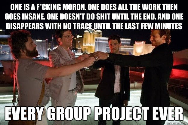 One is a f*cking Moron. One does all the work then goes insane. one doesn't do shit until the end. and one disappears with no trace until the last few minutes Every group project ever  Hangover