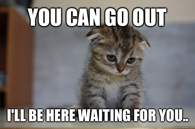 You can go out I'll be here waiting for you..  Sad Kitten