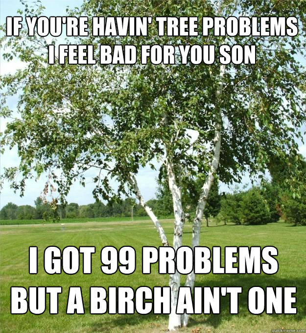 If you're havin' tree problems i feel bad for you son I got 99 problems but a birch ain't one