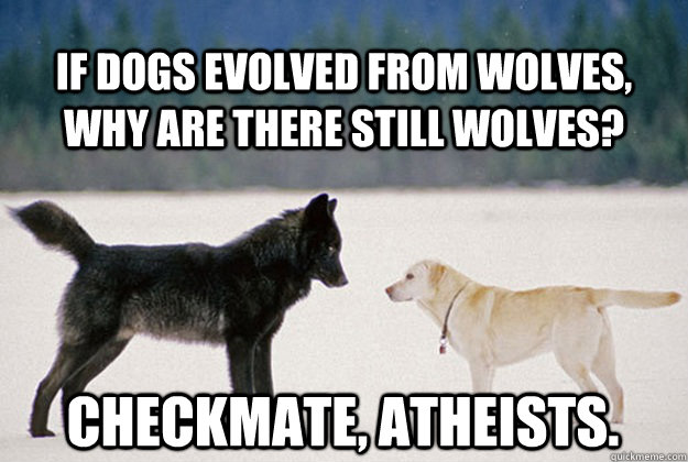 If dogs evolved from wolves, why are there still wolves? Checkmate, atheists. - If dogs evolved from wolves, why are there still wolves? Checkmate, atheists.  Dog & Wolf