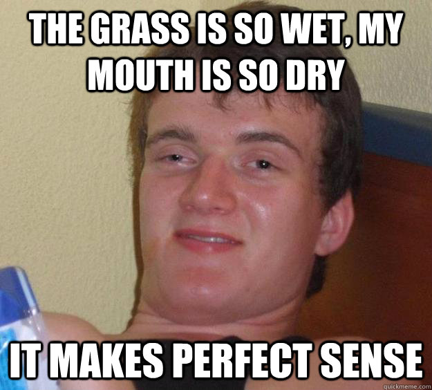The grass is so wet, my mouth is so dry It makes perfect sense - The grass is so wet, my mouth is so dry It makes perfect sense  10 Guy