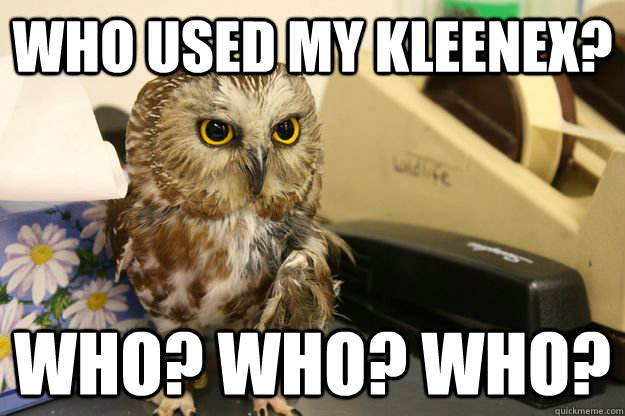 Who used my kleenex? WHO? WHO? WHO?