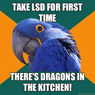 Take Lsd For First Time There 39 S Dragons In The Kitchen