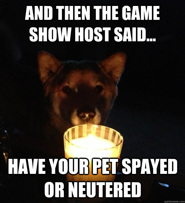 And then the game show host said... Have your pet spayed or neutered