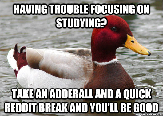 having trouble focusing on studying? take an adderall and a quick reddit break and you'll be good - having trouble focusing on studying? take an adderall and a quick reddit break and you'll be good  Malicious Advice Mallard