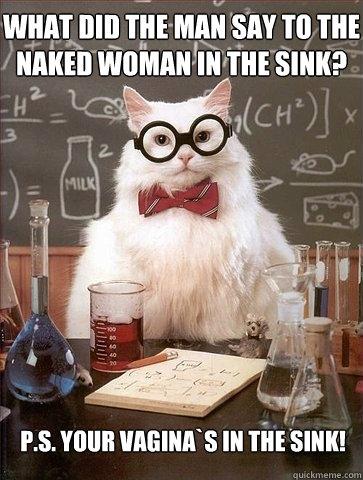 Vagina in the sink joke