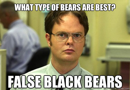 What type of bears are best? FALSE black bears  Dwight