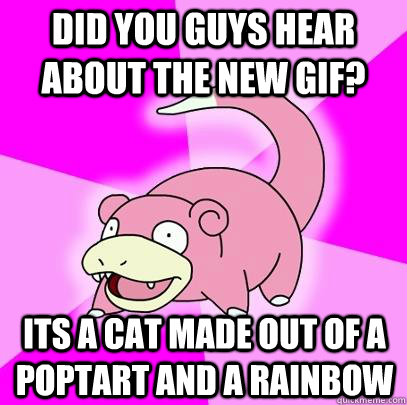Did you guys hear about the new gif? its a cat made out of a poptart and a rainbow  Slowpoke