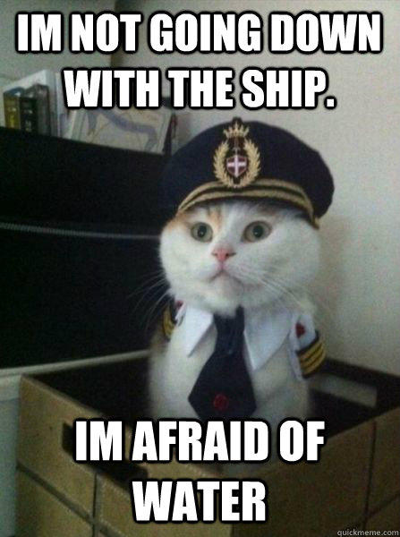 Im not going down with the ship. Im afraid of water   Captain kitteh