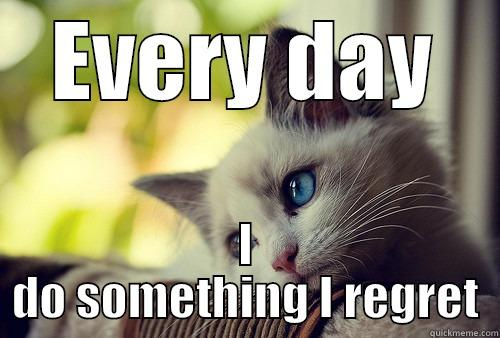 EVERY DAY I DO SOMETHING I REGRET First World Problems Cat