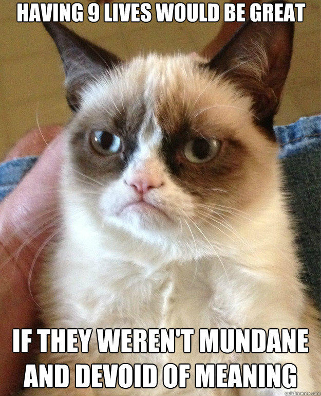 having 9 lives would be great if they weren't mundane and devoid of meaning - having 9 lives would be great if they weren't mundane and devoid of meaning  Misc