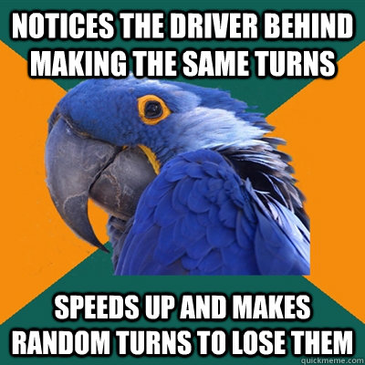 Notices the driver behind making the same turns Speeds up and makes random turns to lose them - Notices the driver behind making the same turns Speeds up and makes random turns to lose them  Paranoid Parrot
